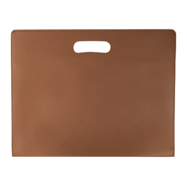 dailyo hickory 13 inch Medium laptop sleeve