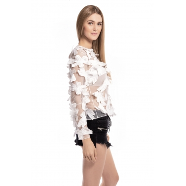 Flower Soft Net Applique Long sleeves Top