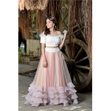Off shoulder crop  top with 3 coloured  panneled skirt.